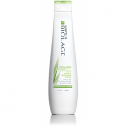 Matrix Biolage Scalpsync CleanReset Normalizing Shampoo - Hairsale.se