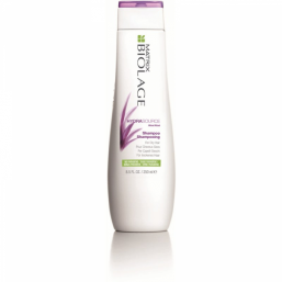 Matrix Biolage HydraSource Shampoo 250ml - Hairsale.se